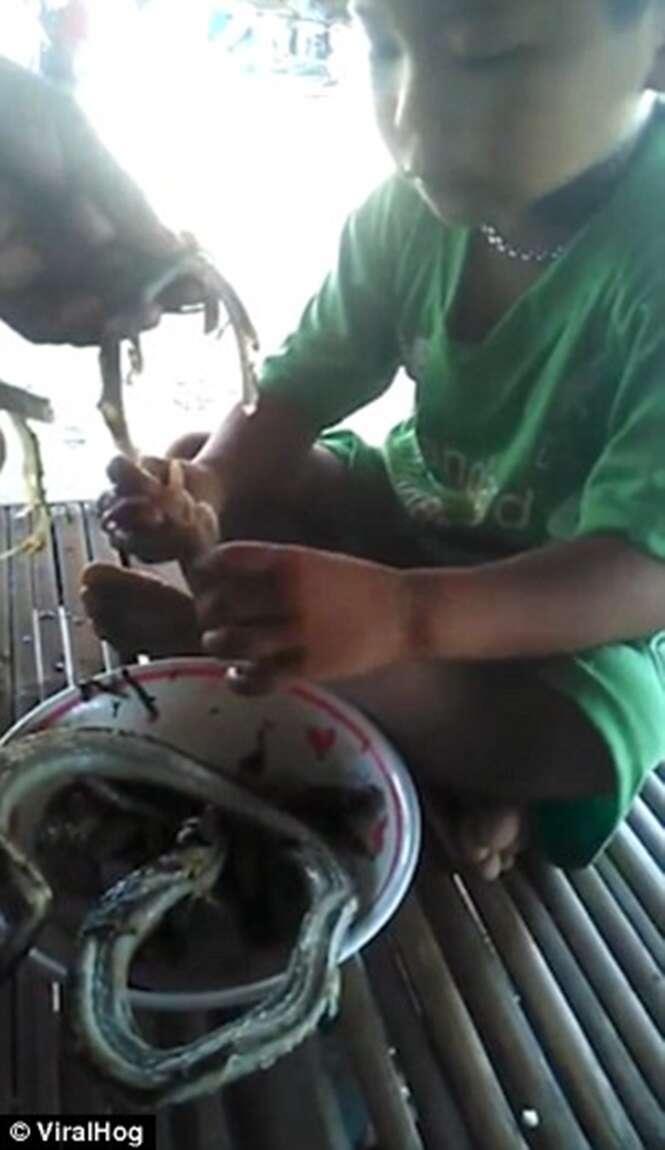 Criança entusiasmada enquanto come cobra pela primeira vez na vida
