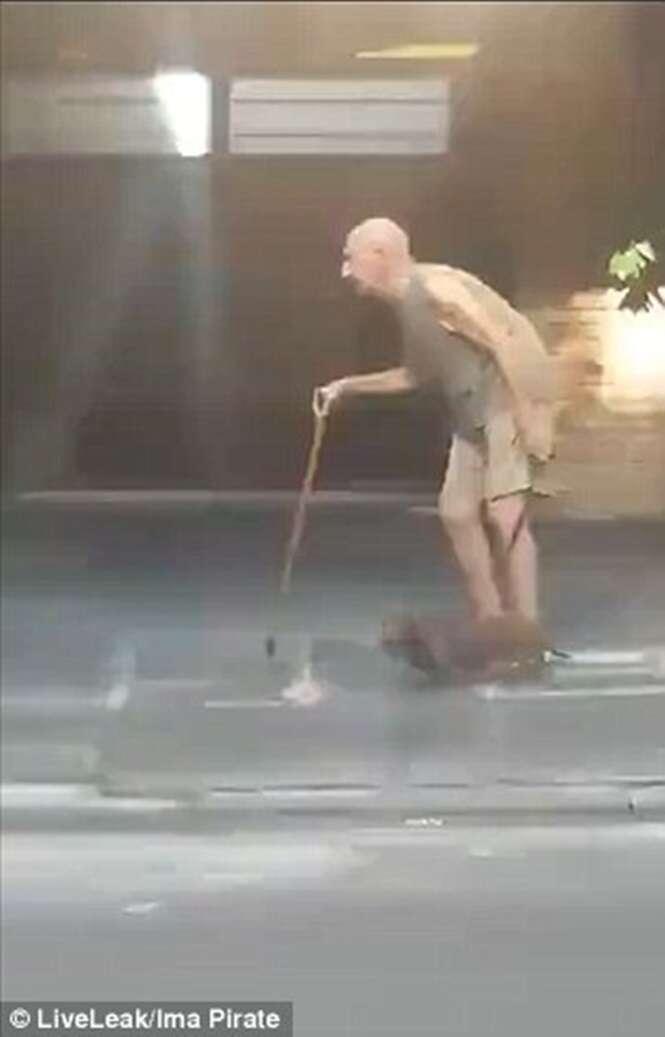 Cão caminhando pacientemente para acompanhar ritmo de seu dono idoso