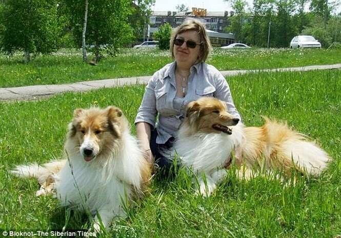 Mulher aluga casa para ela e seus três filhos, mas enche residência com 56 cães e 25 gatos