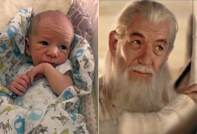 Bebês que se parecem com adultos