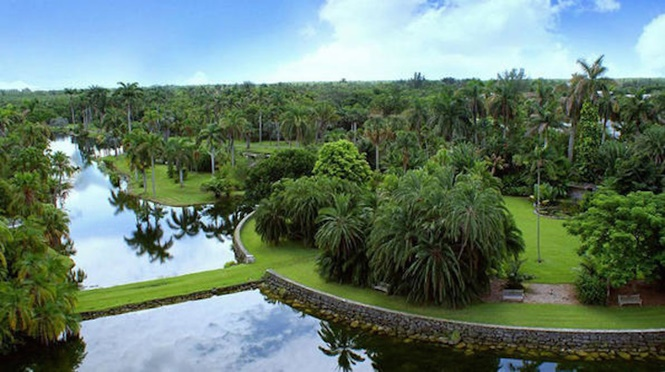 Foto: Fairchild Tropical Botanic Garden