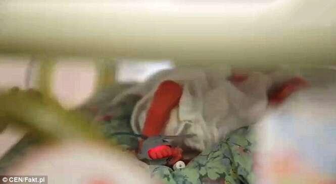 Bebê nasce dois meses depois de sua mãe falecer