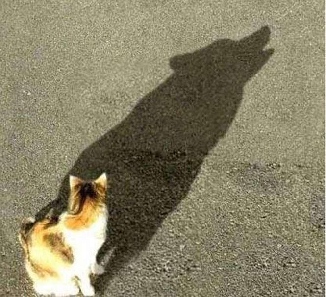 Sombras que não são o que parecem