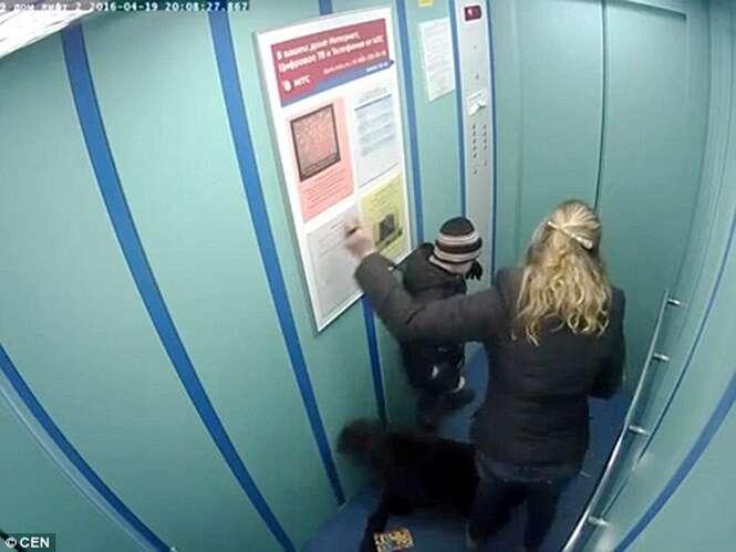 Cão quase é enforcado após coleira ficar presa na porta do elevador
