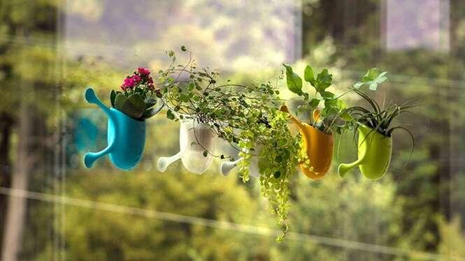 Pequenos vasinhos de plantas são projetados para enfeitar o vidro de sua janela