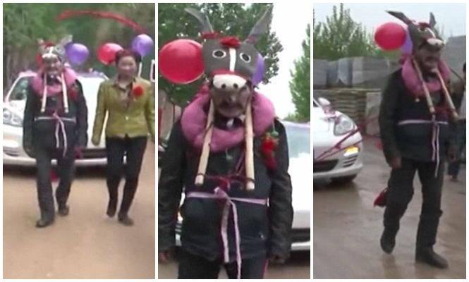 Tradição de casamento bizarra faz pai do noivo se vestir de burro e puxar carro onde casal estava