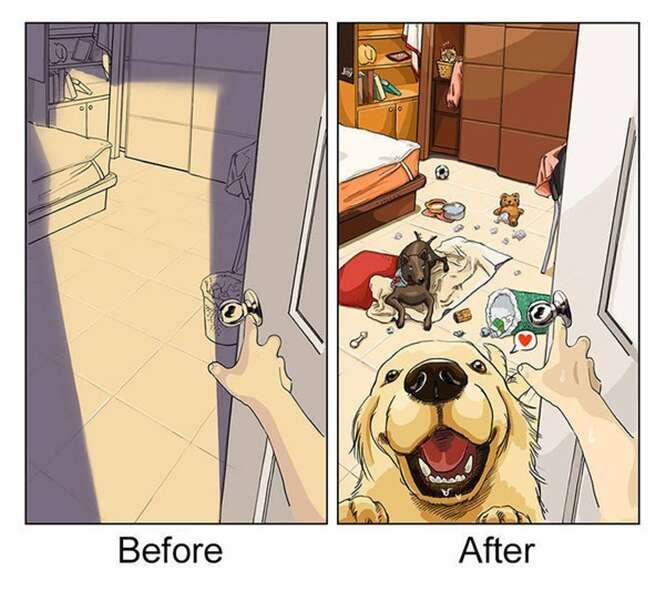 Ilustrações que resumem a vida antes e depois de ter cão de estimação