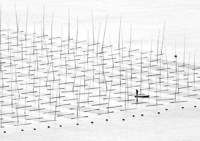Foto: Tugo Cheng