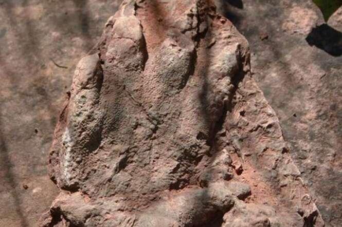Homem encontra uma das mais bem preservadas pegadas de dinossauro