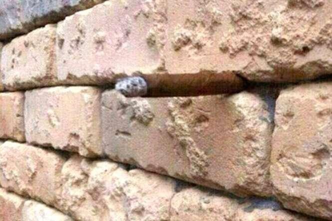 Simples foto de muro de tijolos esconde objeto e deixa internautas confusos.