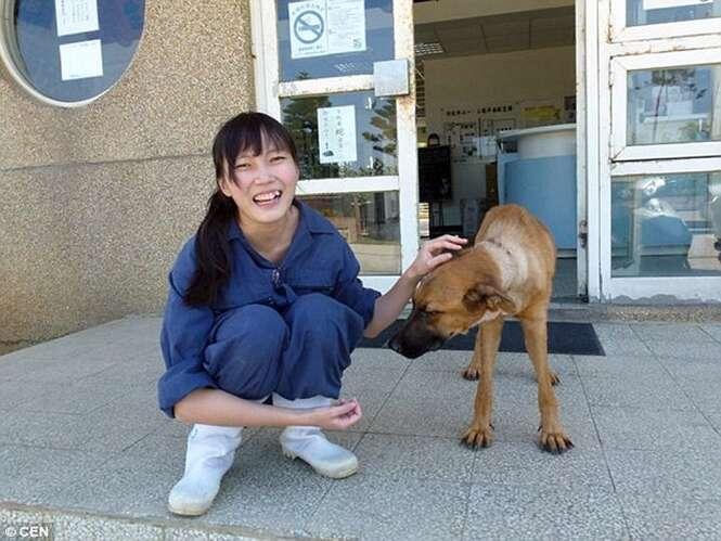 Diretora de abrigo para animais se suicida
