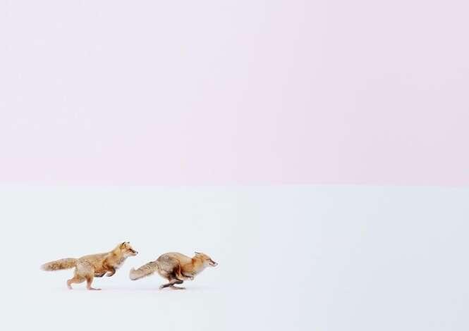 Foto: Hiroki Inoue