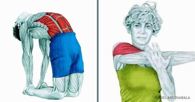 Ilustrações detalhando quais os músculos que você está esticando para cada um dos tipos de alongamento