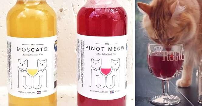 Conheça o vinho feito para gatos