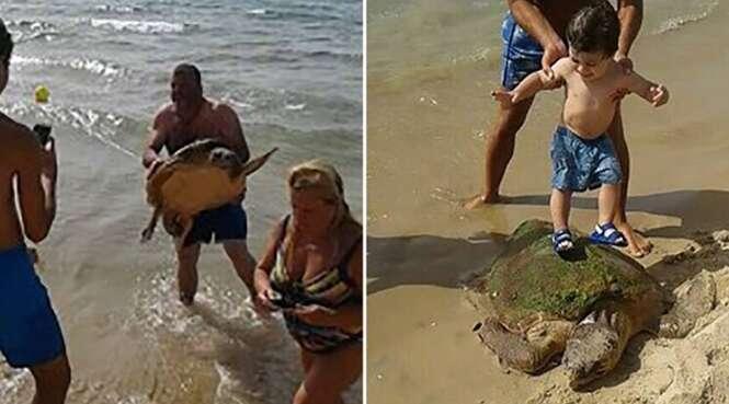 Banhistas quase matam tartaruga após tirá-la da água para fazer selfies