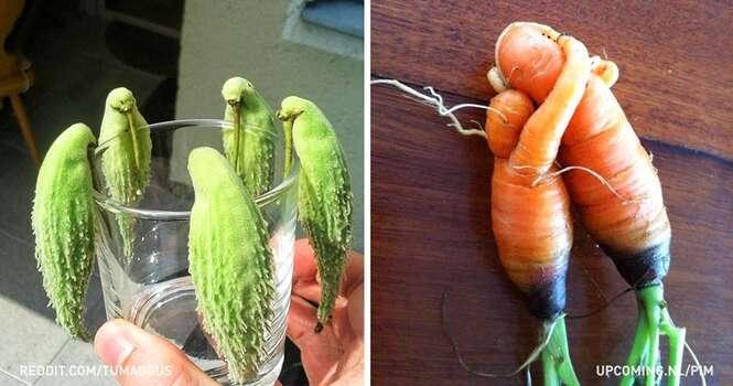 Frutas e vegetais que vão te obrigar olhar duas vezes para entendê-los