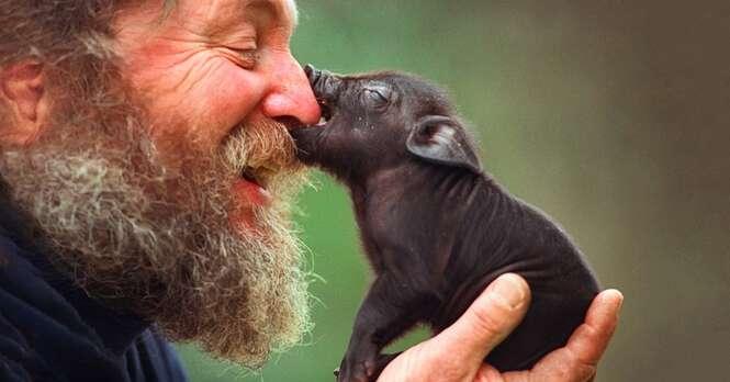 Fotos emocionantes mostrando o amor humano pelos animais