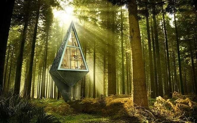 Casas de árvores que você vai querer no seu quintal