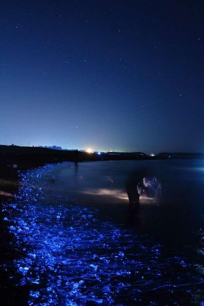 Fotógrafo registra a beleza do mar incandescente japonês