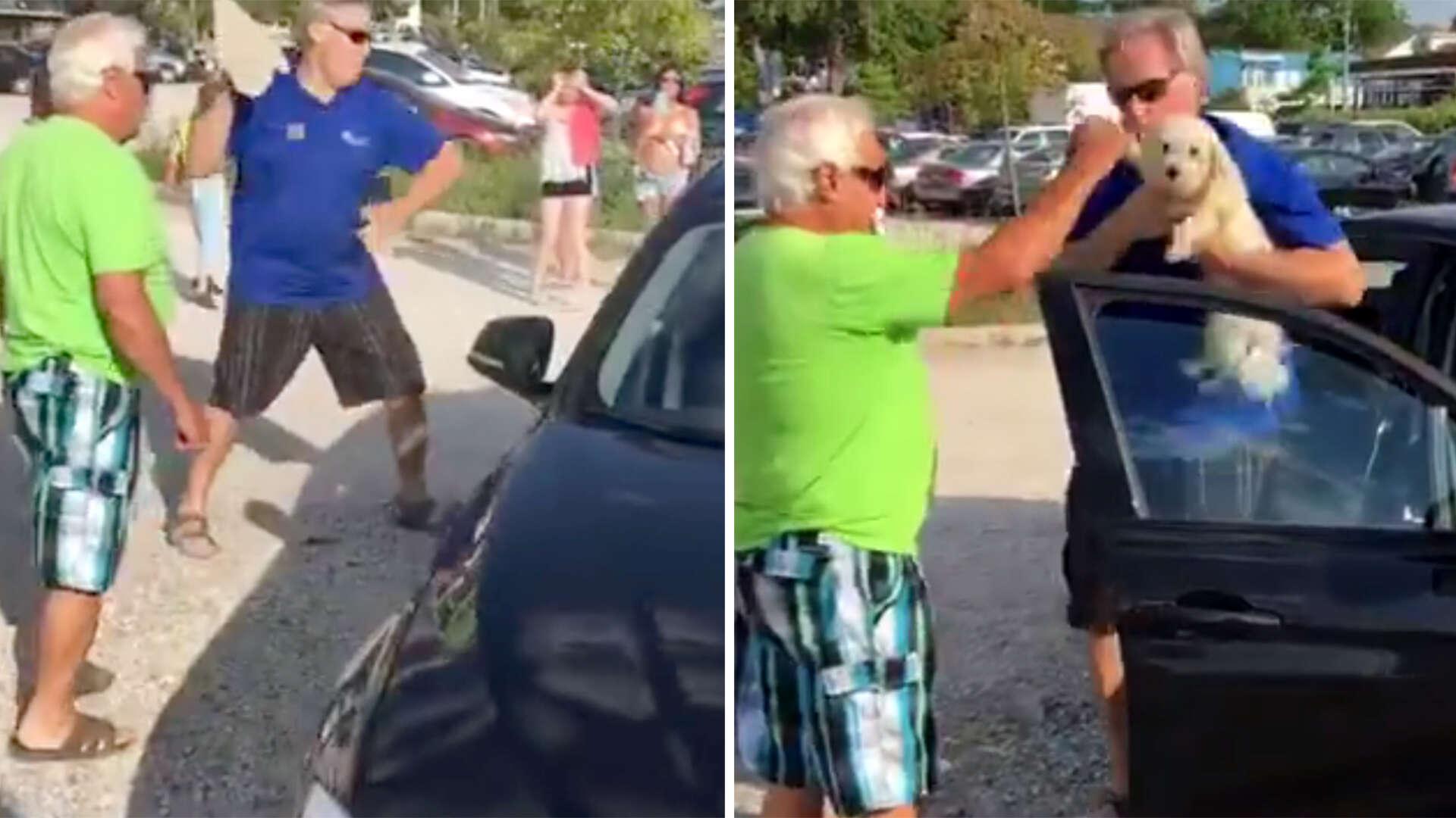 Homem quebra janela de BMW para resgatar cão