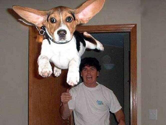 Fotos estranhas encontradas na internet
