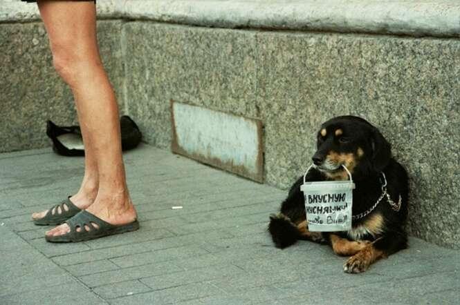 Foto: Inna Zakharova