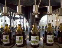 """Fabricante cria """"cervejoduto"""" subterrâneo para levar cerveja ao destino de forma ecológica e rápida"""