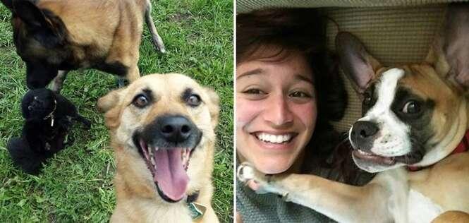 Cães que sabem fazer selfies melhor que você