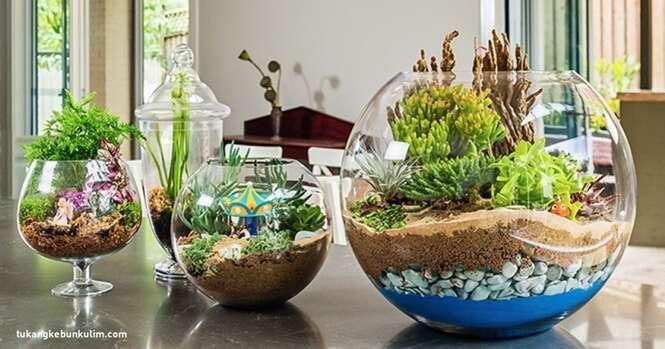 Como criar um jardim miniatura mágico para tornar sua casa mais aconchegante