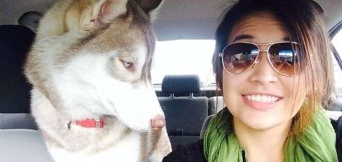 Animais que não estão dando a mínima para suas selfies