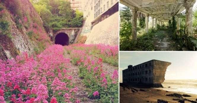 Imagens mostrando a natureza tentando recuperar seu lugar no mundo