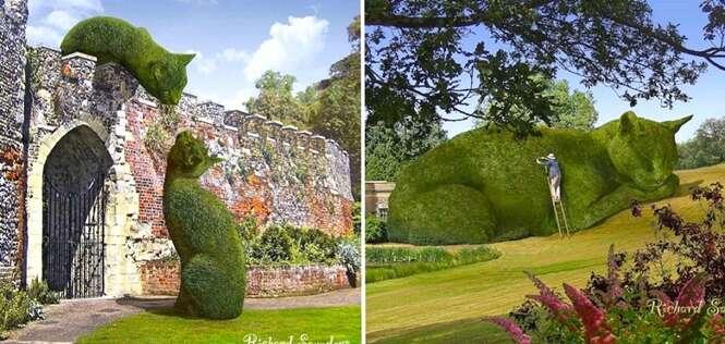 Homem cria arbustos gigantescos e incríveis em homenagem a seu gato falecido