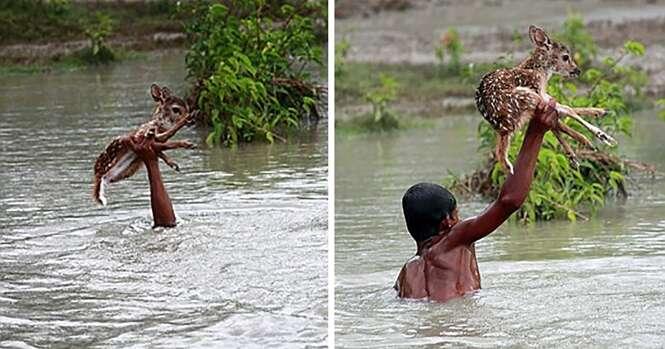 Fotos que vão restaurar sua fé na humanidade