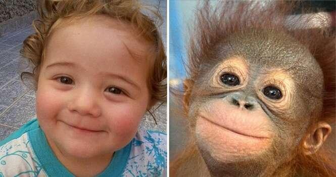 Imagens que provam que os animais podem sentir as mesmas emoções que as crianças