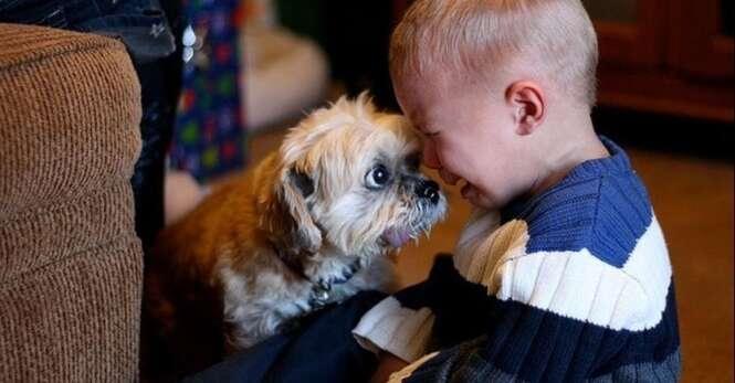 Crianças pequeninas com seus cães monstruosos