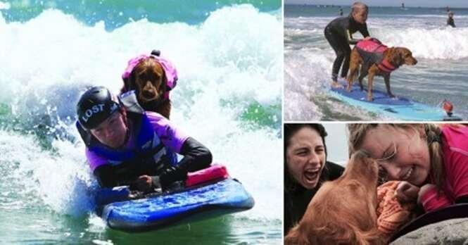Esse cão adorável surfa com pessoas deficientes