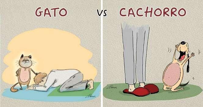 Ilustrações divertidas mostram a diferença real entre cães e gatos