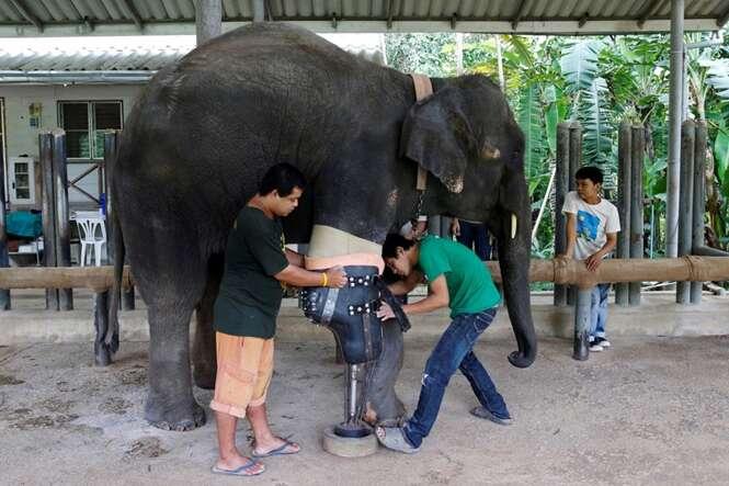 Foto: Athit Perawongmetha - Reuters