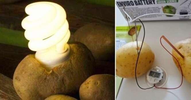 Use uma batata para iluminar um ambiente por 40 dias