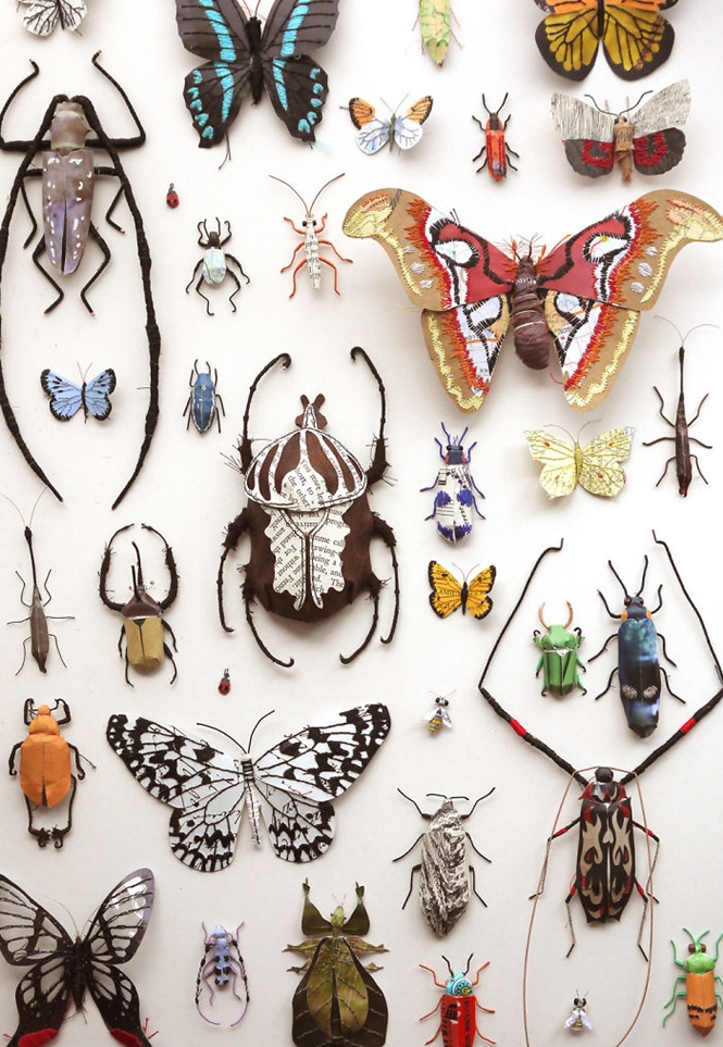 Artista usa papel reciclado para criar borboletas e outros insetos