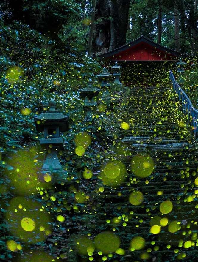 Foto: Hiroyuki Shinohara
