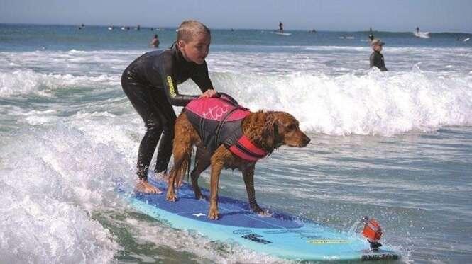 Ricochet surfeando con West Buckner.  Foto: labioguia