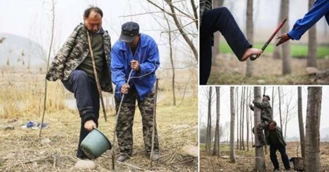 Dois amigos deficientes se completam para plantar juntos 10 mil árvores