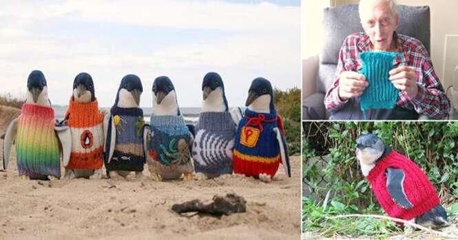 Idoso de 109 anos tece blusas para pinguins se salvarem de derramamento de óleo