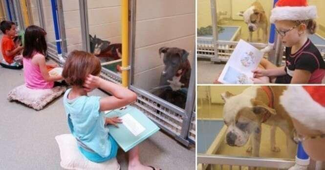 Essa iniciativa criativa permite que crianças leiam histórias para animais abandonados