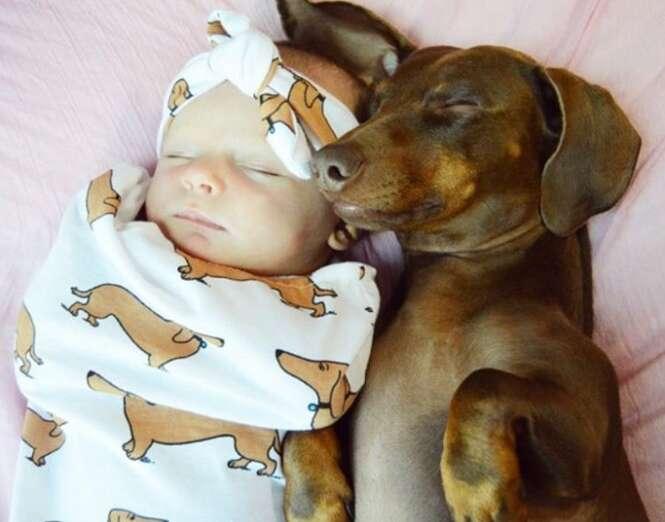 Razões provando que as crianças que crescem com cães são mais felizes
