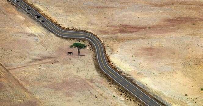 Imagens inspiradoras mostrando que a humanidade tem respeito pela natureza
