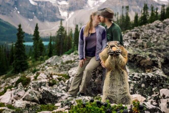 """Esquilo """"atrapalha"""" foto de casal da maneira mais adorável possível"""