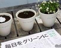 Esse jornal se transforma em planta depois de ser lido