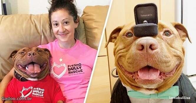 Mulher adota cão e recebe, em troca, a coisa mais importante do mundo